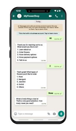 Whatsapp conversations